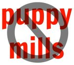 no puppy mill sign